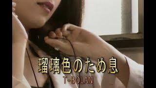 瑠璃色のため息 (カラオケ) T-BOLAN