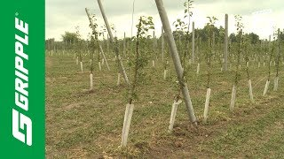 GPAK For Orchards   Product Focus
