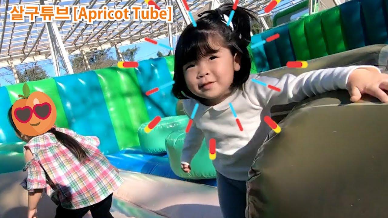 【놀이동산(세이부유원지)】가을 나들이 살구랑 놀이동산 산책! 회전목마,팬더,관람차,롤러코스터 많은 놀이기구에 탔어요   Seibuen Yuenchi Tokyo Japan