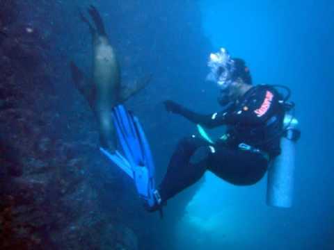 35 Atlantes na Baja California - Mar de Cortez