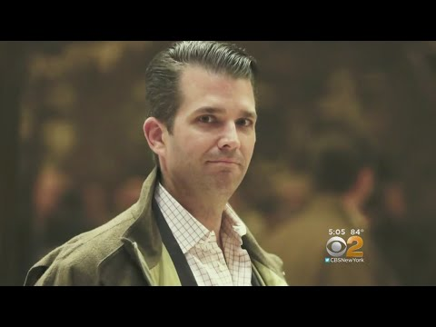 Donald Trump Jr. Under Fire For Meeting With Russian Attorney