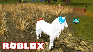 ROBLOX HORSE WORLD Quiet Countryside 4TH OF JULY HORSE Finds a Secret Cave
