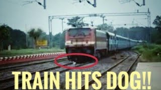 Train Hits Dog|Deadly WAP4 in Angry Mood|Maurya Express crushes Dog at Full Speed