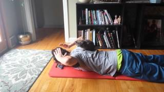 Prone shoulder sequence (pieced from FRC)