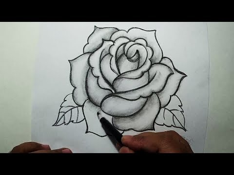 How to Draw A Rose    Easy Pencil Drawing
