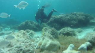 atemrausch*- tauchen  in cala san vicente, mallorca - scuba diving