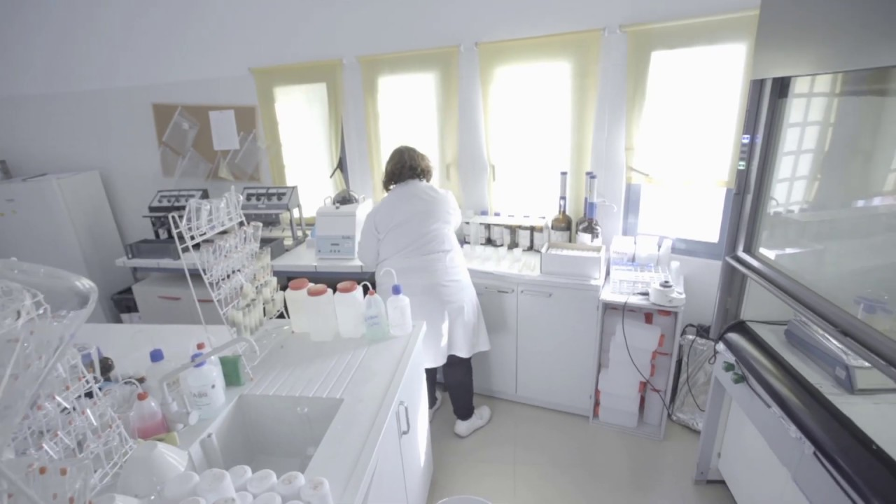Trabajo laboratorio de suelos bogota