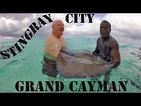 Stingray City, Grand Cayman Excursion on our 7-day Carnival Cruise - November, 2014