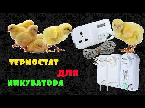 Терморегулятор термостат регулятор температуры для  аквариума, холодильника, инкубатора.
