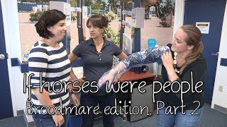 If horses were people - Broodmare edition, Part 2