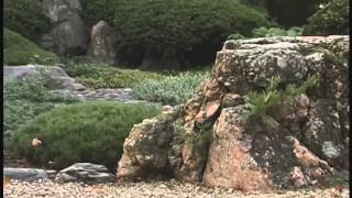 In Full Circle: The Japanese Garden as a Work of Art in Progress