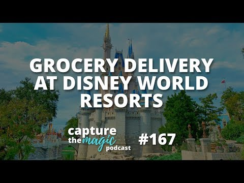 Grocery Delivery At Disney World Hotels | Capture The Magic