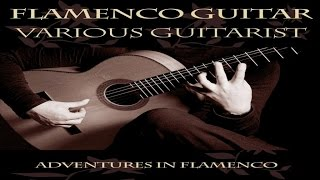 Best Classics - Flamenco Guitar