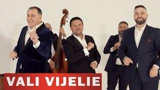 Descarca Vali Vijelie, Nicu Paleru & Florin Baboi - E plin de milionari 2020