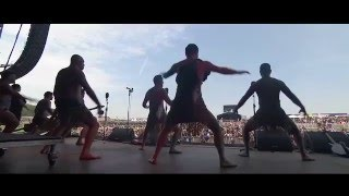 Manaia haka festival Glastonbury & Download & others