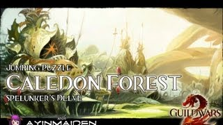 ★ Guild Wars 2 ★ - Jumping Puzzle - Caledon Forest (Spelunker