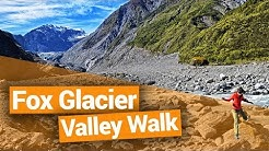 Free Fox Glacier Terminal Face Walk - New Zealand's Biggest Gap Year – Backpacker Guide New Zealand