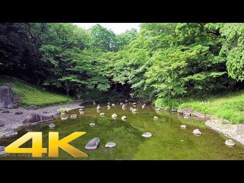 Walking around Koishikawa Korakuen Garden, Tokyo - Long Take【東京・小石川後楽園】 4K
