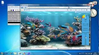 IE9 Beta leaked, Internet Explorer 9 Beta leaked