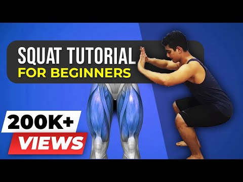 How to squat for beginners - FREE AND WEIGHTED - BeerBiceps Workout