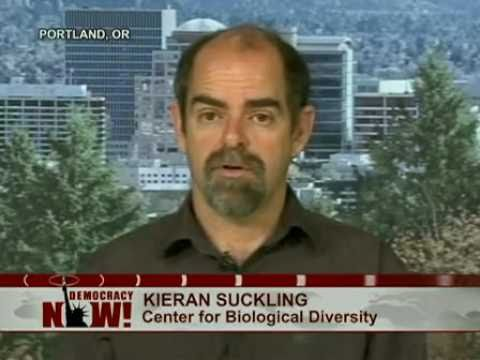 Kieran Suckling of Center for Biological Diversity on Lessons Not Learned From BP Oil Spill. 2 of 2