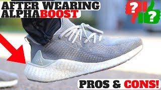 Adidas AlphaBOOST Review After Wearing! Worth Buying? (Pros & Cons)