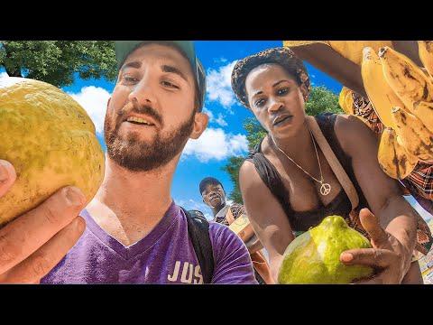 Download  What Can $10 Get in CENTRAL AFRICAN REPUBLIC? Gratis, download lagu terbaru