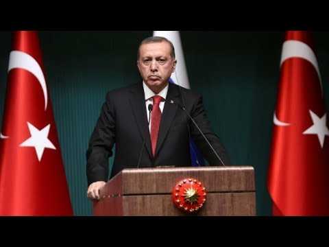 فرانس 24:Turkey will attack Syria's Afrin 'in the coming days', Erdogan says