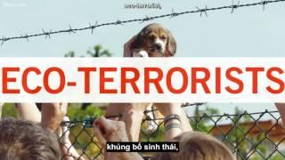 Video TED Vietsub Will Potter  Khi đấu tranh phi bạo lực bị cho là khủng bố download MP3, 3GP, MP4, WEBM, AVI, FLV Juli 2018