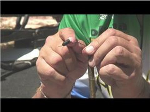 Bass Fishing : How to Bass Fish With Plastic Worms