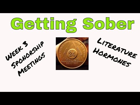 1 YEAR SOBER: The Story of an Alcoholic from YouTube · Duration:  34 minutes 35 seconds