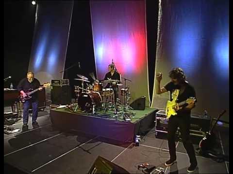 Collegium Musicum - Concerto in D (Live, 2010)
