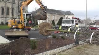 Plantation d'arbres rue Jean de Dormans
