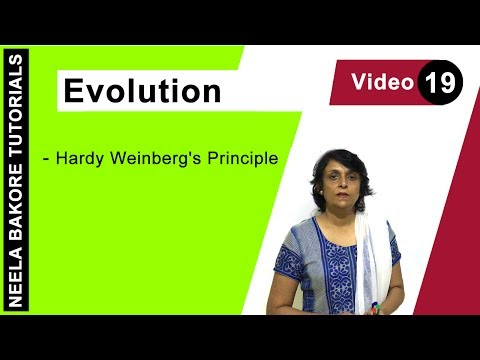 Evolution - Hardy Weinberg