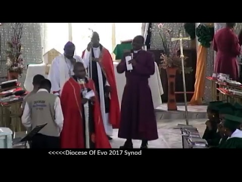 Diocese of Evo Synod 2017