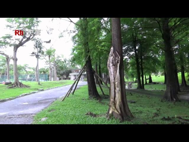 【RTI】Yilan y el Parque de Deportes de Luodong (西班牙語)