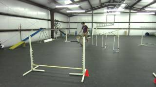 Dog Agility: Learning Weave Poles