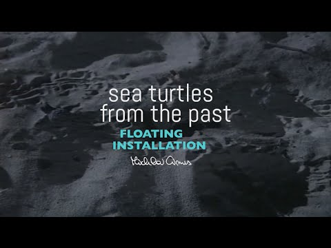 Sea Turtles from the Past - Floating Installation by Michela Cinus