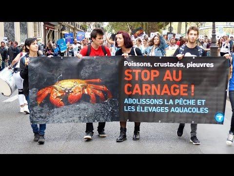 Veggie Pride - Paris - 08 octobre 2016