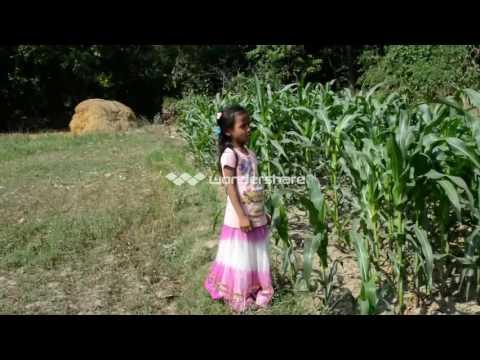 Sana sana aakha tara sapana bhari bhari by Kriti 2073 (Arangahwa Production)