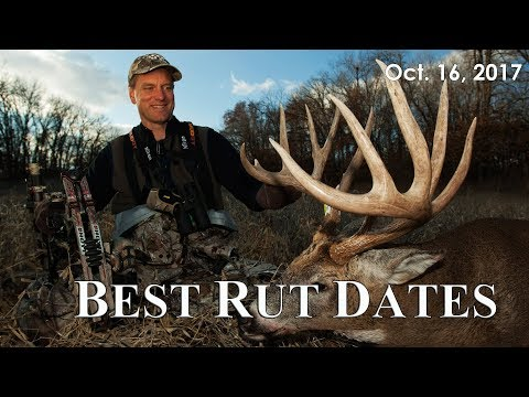 Best Rut Dates, Beating The Lull | Midwest Whitetail