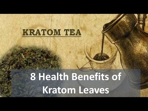 8 Health Benefits of Kratom Leaves