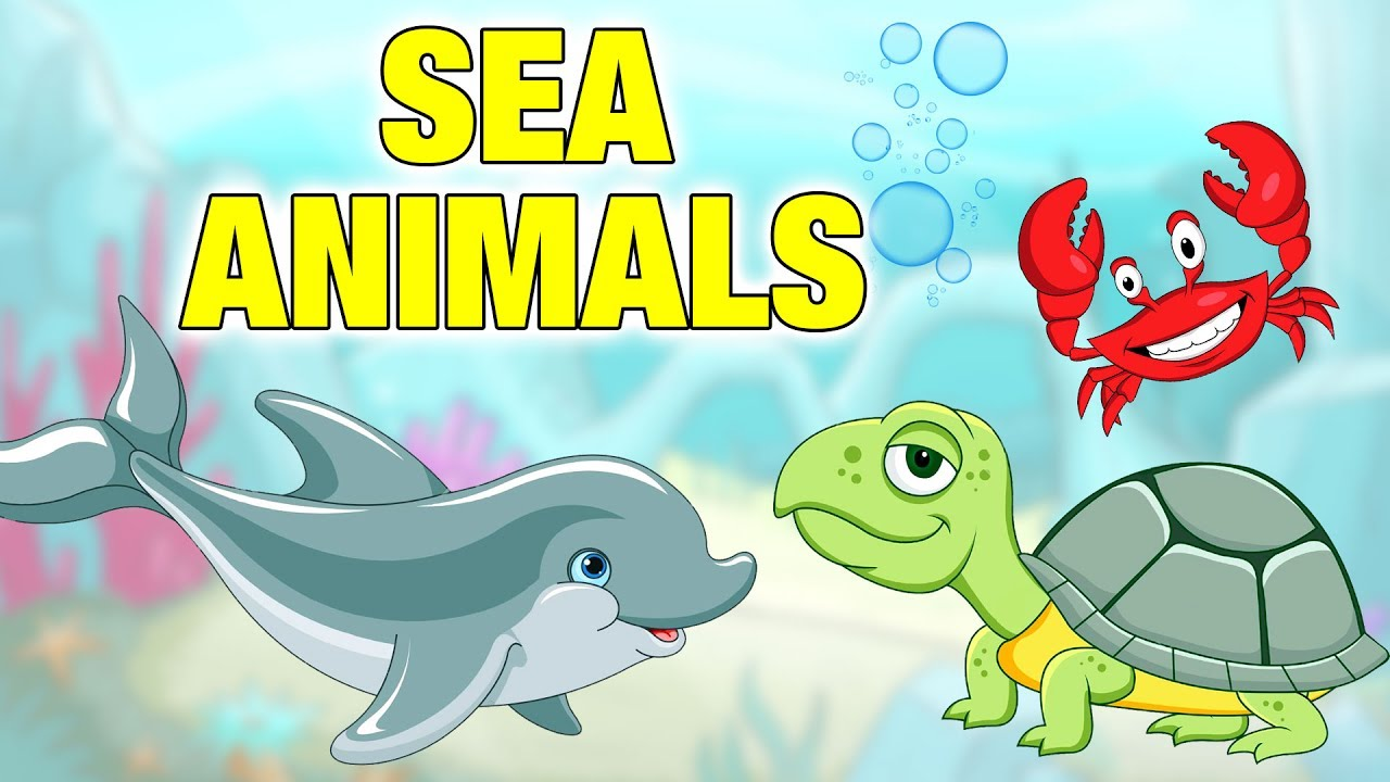 Sea Animals 3d Animated Video For Childrens Animalsnames