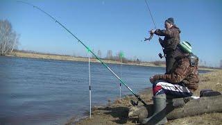 Язь Жирует Весенняя Рыбалка по Открытой Воде