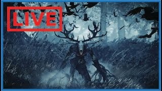 Monster Hunter world - Bora matar o Liche Ancião!
