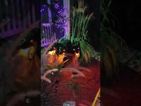 Fort Benning Halloween 2016