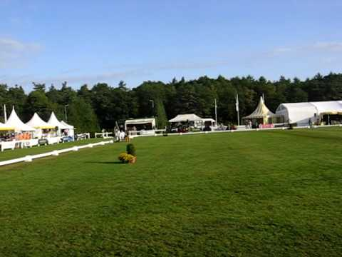 Welsh event Zomerdijks Willie wortel  Romy van Zuthem