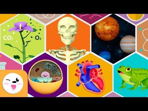 repaso-de-ciencias-de-la-naturaleza---cuerpo-humano,-la-planta,-la-célula,-sistema-solar-y-animales