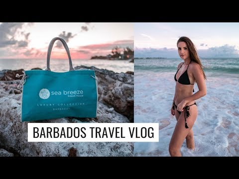CARIBBEAN TRAVEL VLOG: ARRIVING IN BARBADOS, SEA BREEZE BEACH HOUSE ROOM TOUR! | Molly J Curley