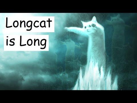Longcat is Long